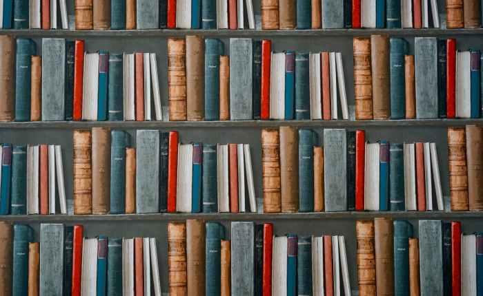 Book Binge: January2019